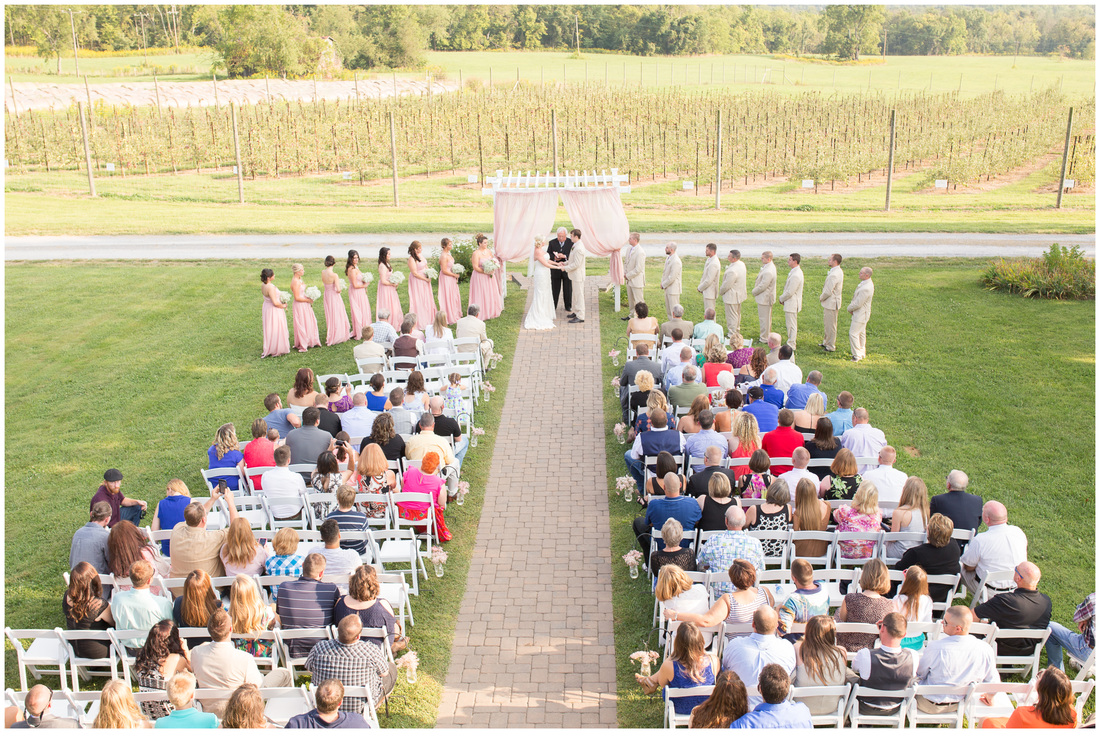 Doe Creek Farm wedding, Pembroke va wedding venue, blush wedding ceremony, mountain view wedding venue virginia, Va wedding venue, apple orchard wedding, pink wedding