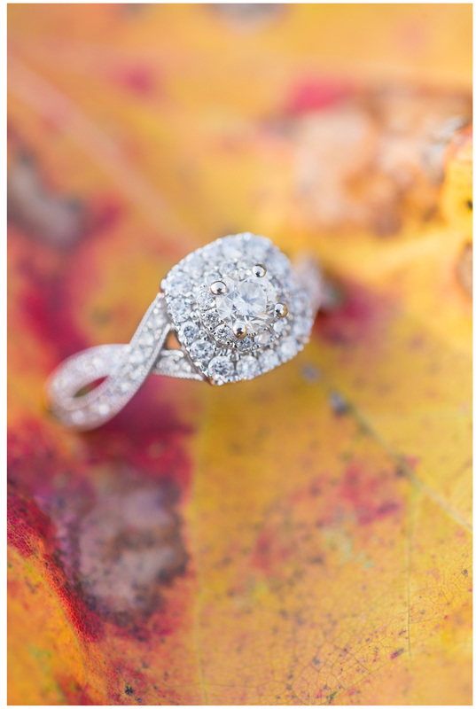 Fall ring shot, engagement ring photo, leaf engagement ring, blacksburg va wedding photographer, roanoke wedding photographer,
