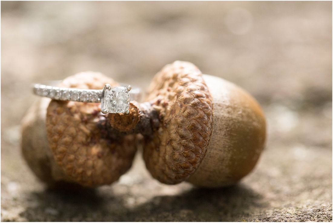 Mountain_Lake_Pembroke_VA_Engagement_Ring_Laura_TJ (1)