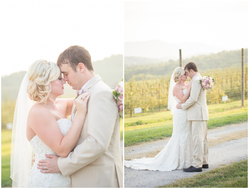 bride and groom apple orchard, pink wedding, orchard wedding, rustic barn wedding, virginia wedding photographer, blacksburg photographer, radford wedding photographer, roanoke wedding photographer, bristol va wedding photographer, doe creek farm, doe creek wedding venue